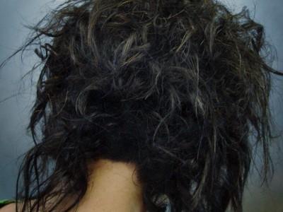 007 peluquería chica