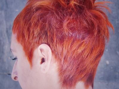 020 peluquería chica