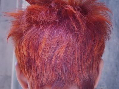021 peluquería chica
